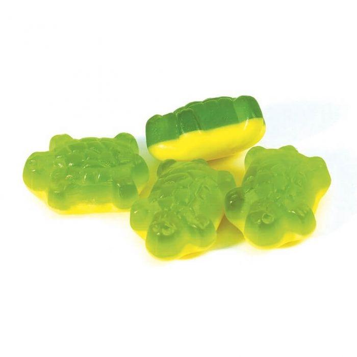 3kg Terrific Turtles